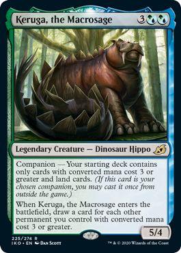 Keruga the Macrosage Companion