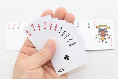 Sago Brothers Mini Cards