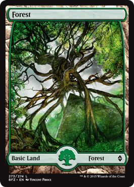 Where to Get Basic Lands Full Art Forest MTG.png